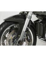 Schutzblech Carbon BMW R 1200 R